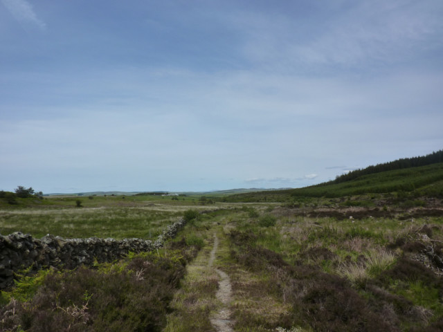 The moorland of Glenwhan Moor
