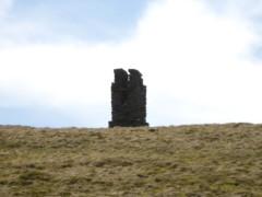 OId survey pillar on Branstree