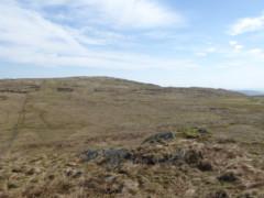 Fence running between Tarn Crag and Grey Crag