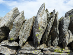 A close up on the Wall of Tarn Crag