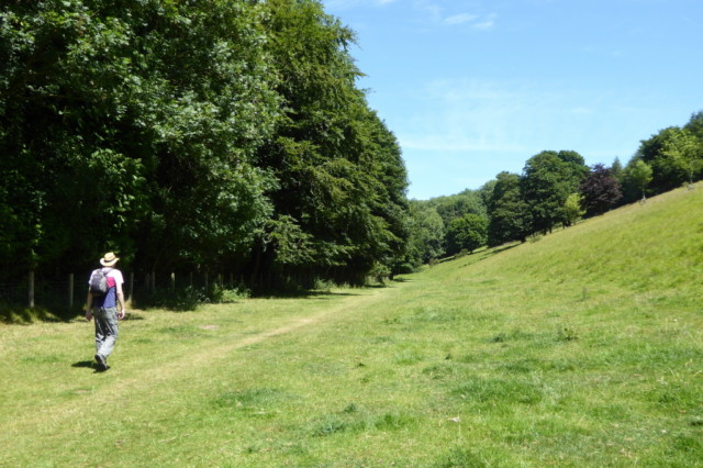 Talk walks through Welton Dale next to grassy slopes and many trees