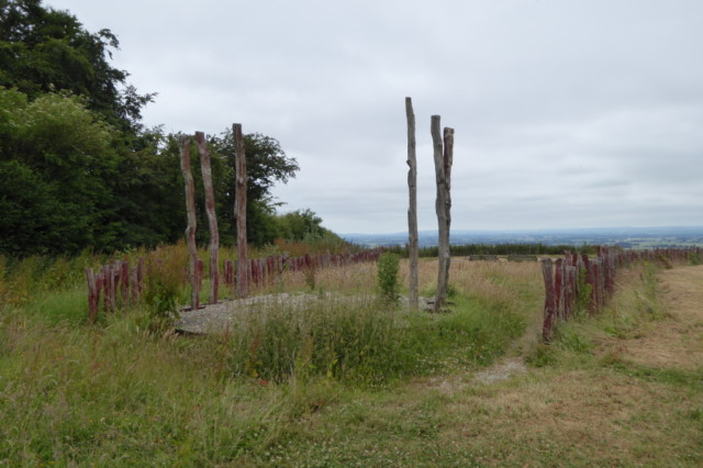 Wooden posts, forming part of the Enclosure Rights art installation