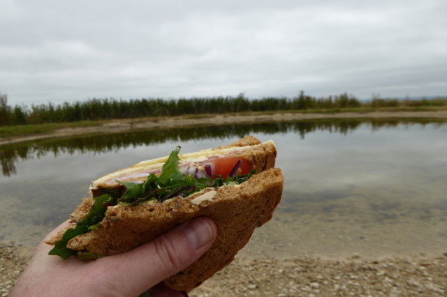 Picture of a sandwich, held in front a dew pond
