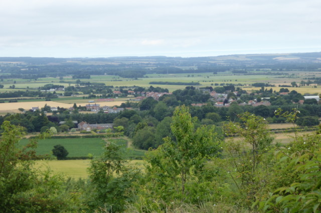 The village of Sherburn, with the Vale of Pickering behind it.