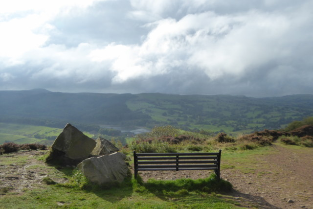 A bench in Tegg's Nose Country Park, looking out across a valley