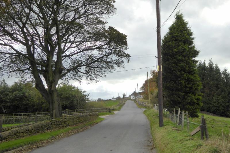 Mow Lane