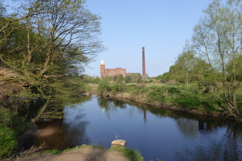 The River Goyt, seen in Woodbank Park with Pear Mill in the background.