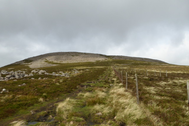 Fence on heather-topped fell Great Borne