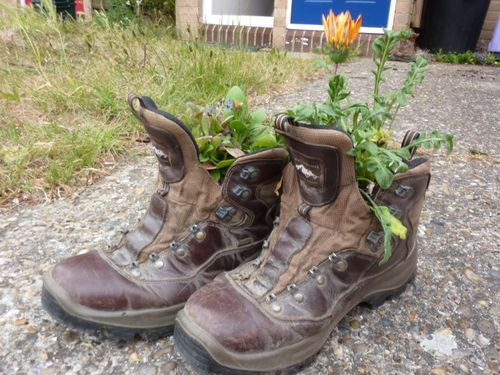 Hiking boots with flowers in them